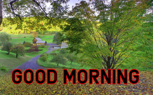 Good Morning Images For My Dear Friend (96)
