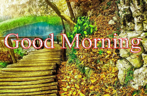GOOD MORNING IMAGES WITH TEACHERS DAY PHOTO PICS DOWNLOAD
