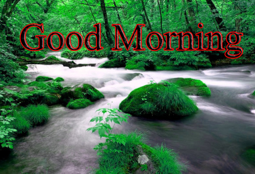 GOOD MORNING IMAGES WITH TEACHERS DAY PICTURES PICS HD