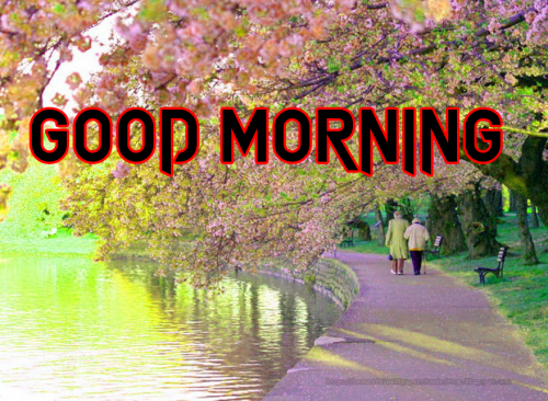 GOOD MORNING MY BEAUTIFUL ANGEL IMAGES PICTURES PHOTO HD