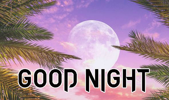 GOOD NIGHT IMAGES  PICS PICTURE FOR FRIEND