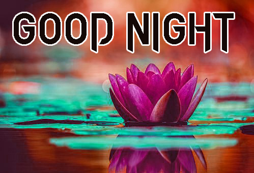 GOOD NIGHT IMAGES WALLPAPER PHOTO PICS FOR WHATSAPP