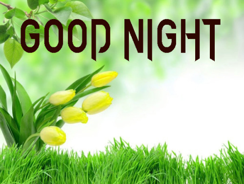GOOD NIGHT IMAGES PICTURES WALLPAPER PHOTO FOR SISTER