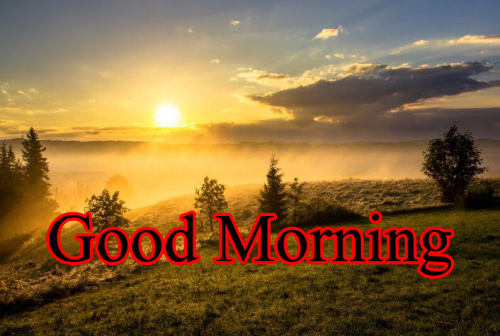 HD GOOD MORNING IMAGES PICTURES PHOTO HD