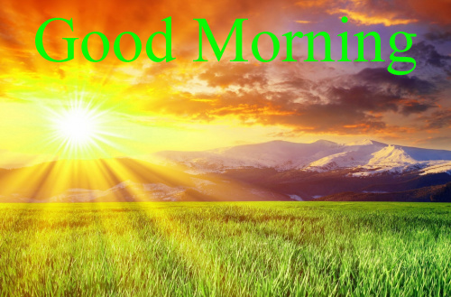 HD GOOD MORNING IMAGES PHOTO WALLPAPER DOWNLOAD