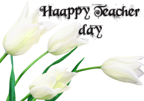 HAPPY TEACHERS DAY IMAGES PHOTO WALLPAPER FOR WHATSAPP