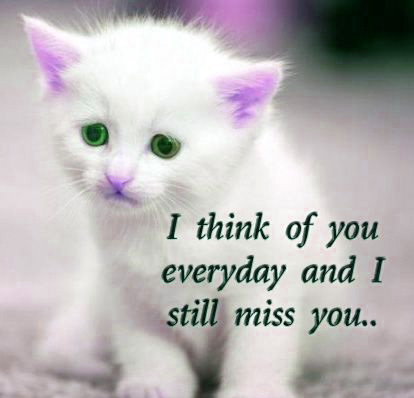 HEART TOUCHING IMAGES FOR WHATSAPP DP PROFILE IMAGES PICS