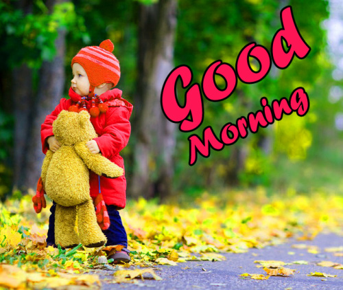 ALL NEW GOOD MORNING IMAGES PICTURES PHOTO FREE HD