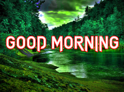 NATURE GOOD MORNING IMAGES PICTURES PICS FOR WHATSAPP