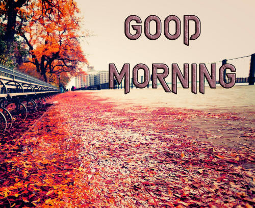 ROMANTIC GOOD MORNING IMAGES FOR GF & BF PHOTO PICS FREE HD