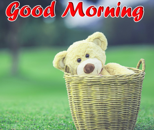 VERY CUTE GOOD MORNING IMAGES PHOTO PICS HD