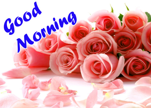 VERY SWEET GOOD MORNING IMAGES PICS PHOTO HD