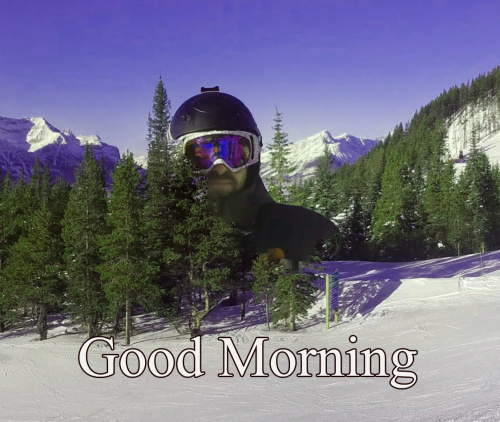 VERY GOOD MORNING IMAGES PICTURE PHOTO DOWNLOAD