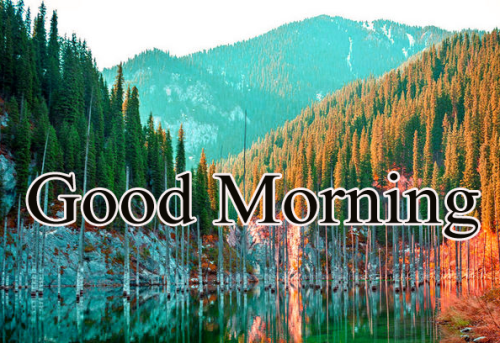 VERY GOOD MORNING IMAGES PHOTO PICS WALLPAPER