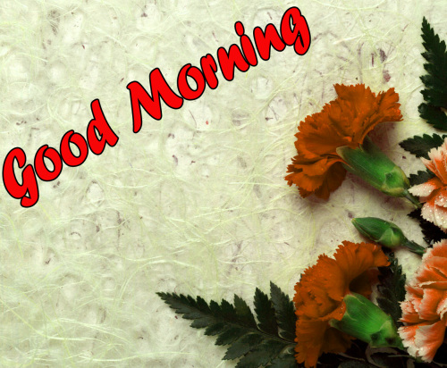 BEST GOOD MORNING IMAGES WALLPAPER PHOTO FOR FACEBOOK