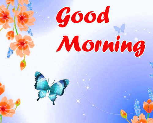 BEST GOOD MORNING IMAGES PICTURES PHOTO HD DOWNLOAD