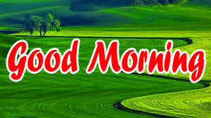 BEST GOOD MORNING IMAGES PICS PHOTO FREE HD DOWNLOAD