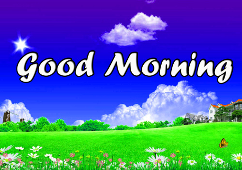 BEST GOOD MORNING IMAGES PICS PICTURES FREE HD DOWNLOAD