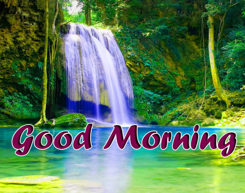 BEST GOOD MORNING IMAGES WALLPAPER PHOTO FREE DOWNLOAD