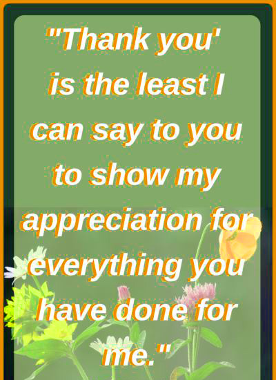 Appreciation Thank You Quotes Images (26)