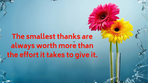 Appreciation Thank You Quotes Images (63)