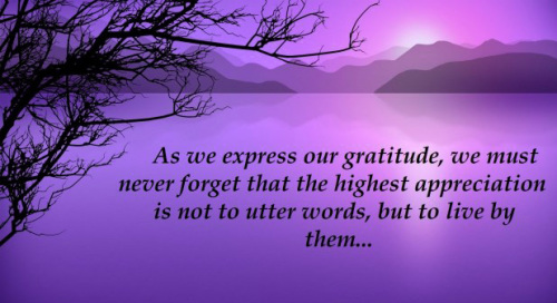 Appreciation Thank You Quotes Images (91)