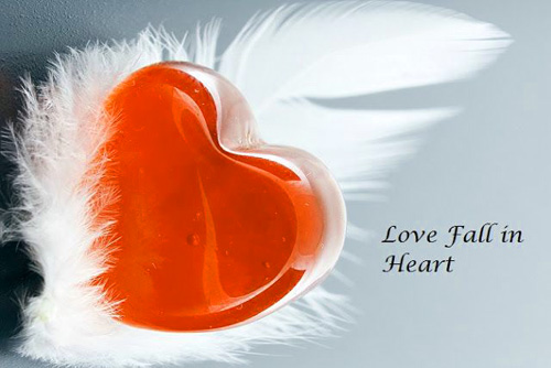 LOVE DP IMAGES FOR WHATSAPP PICTURES PICS HD DOWNLOAD